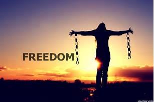 freedomcipp