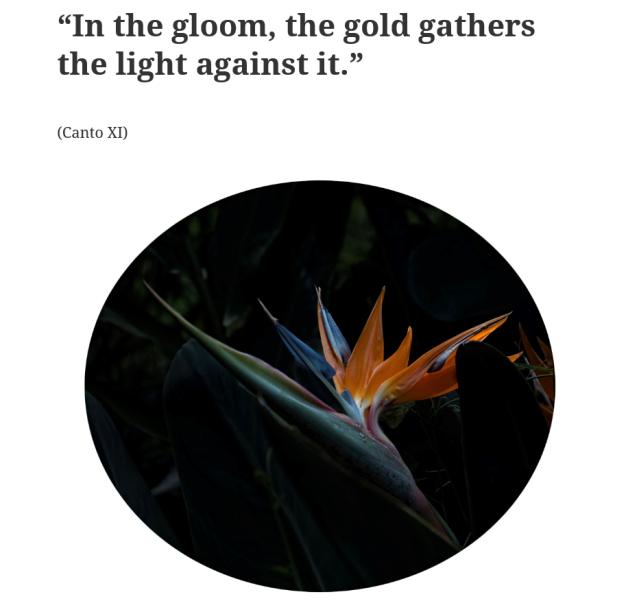 gloom gold